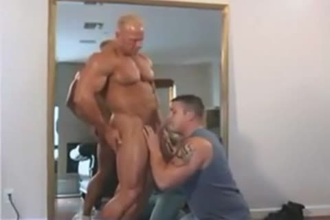 meaty Dakota James bang Ty Fox In Muscle males Moving Compangy Inc two