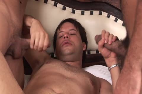 lusty studs likes To fuck And engulf Each Other's weenies In lusty threesome