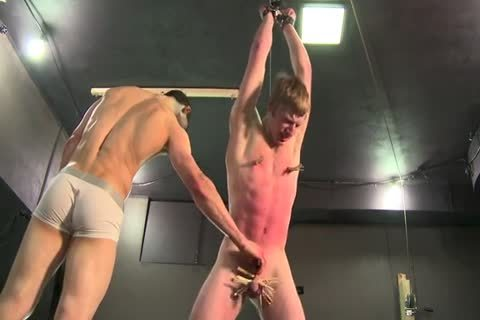 Muscle twink Turtore two