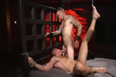 Alex Mecum gets Toremented