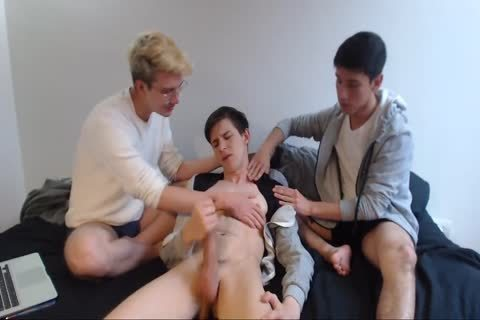 Three horny Cammers